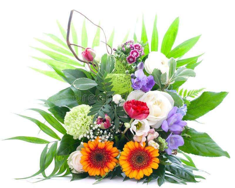 färgrika blommor för grupp royaltyfria foton