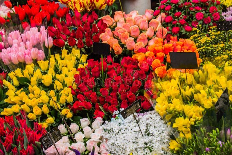 Färgrika blommor i Osaka blommamarknad arkivfoto