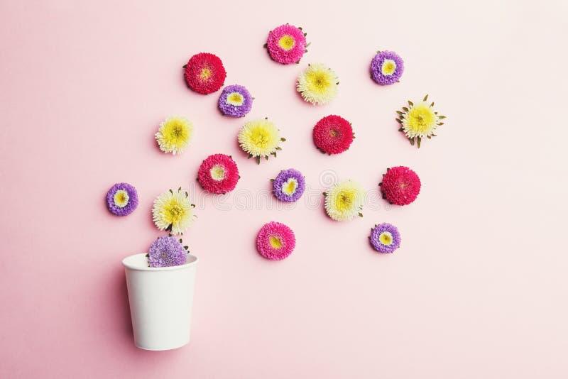 Färgrika blommor och papperskaffekopp på rosa bakgrund arkivfoto