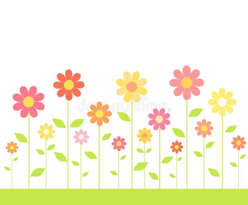 Färgrika blommor på äng vektor illustrationer