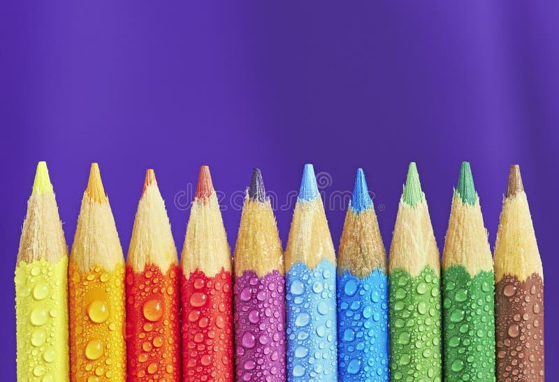 färgrika crayons royaltyfri bild