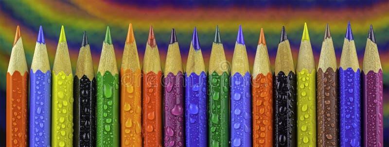 Färgrika färgpennor för panorama royaltyfria bilder