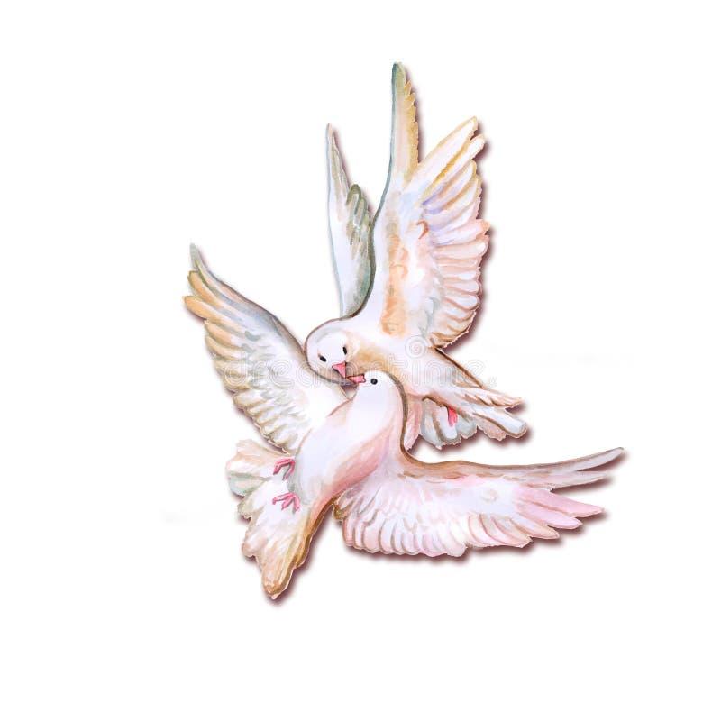 Färgrika fåglar för vattenfärg royaltyfri illustrationer