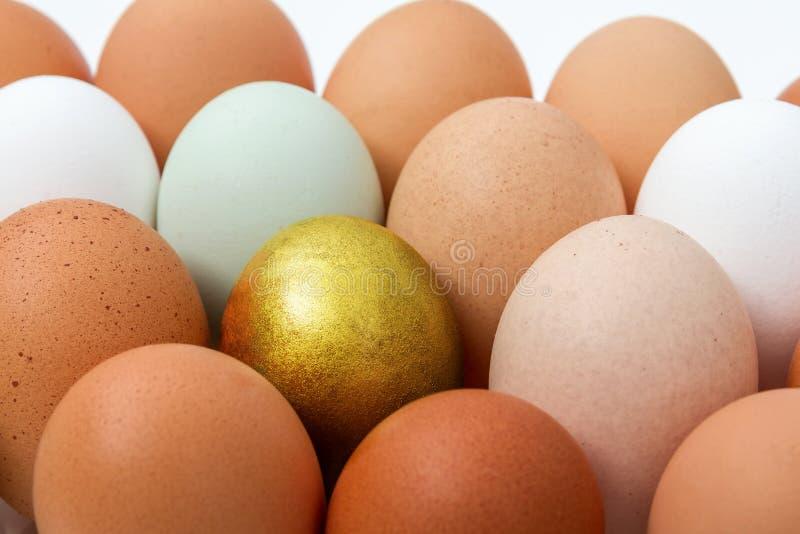 Färgrika fega ägg med det guld- ägget royaltyfri bild