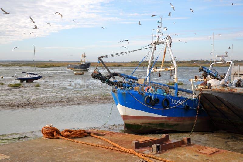 Färgrika fiskebåtar som förtöjas på kajen med seagulls arkivbilder