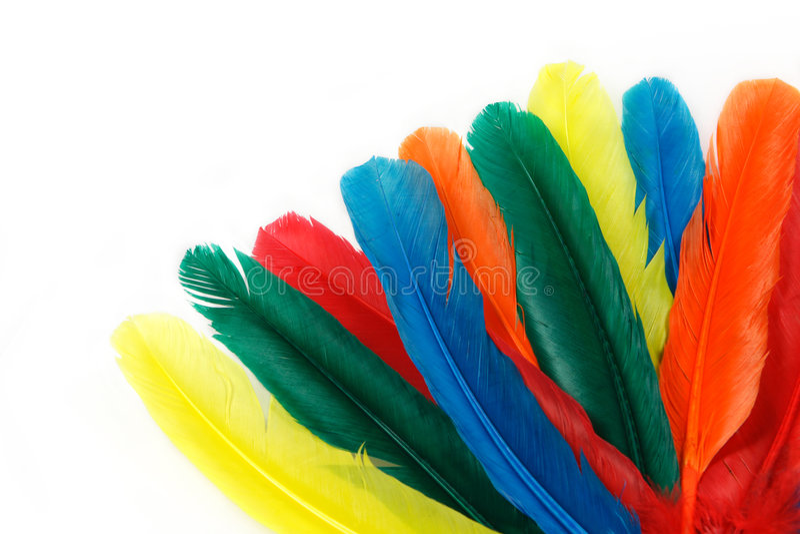 färgrika fjädrar royaltyfria bilder