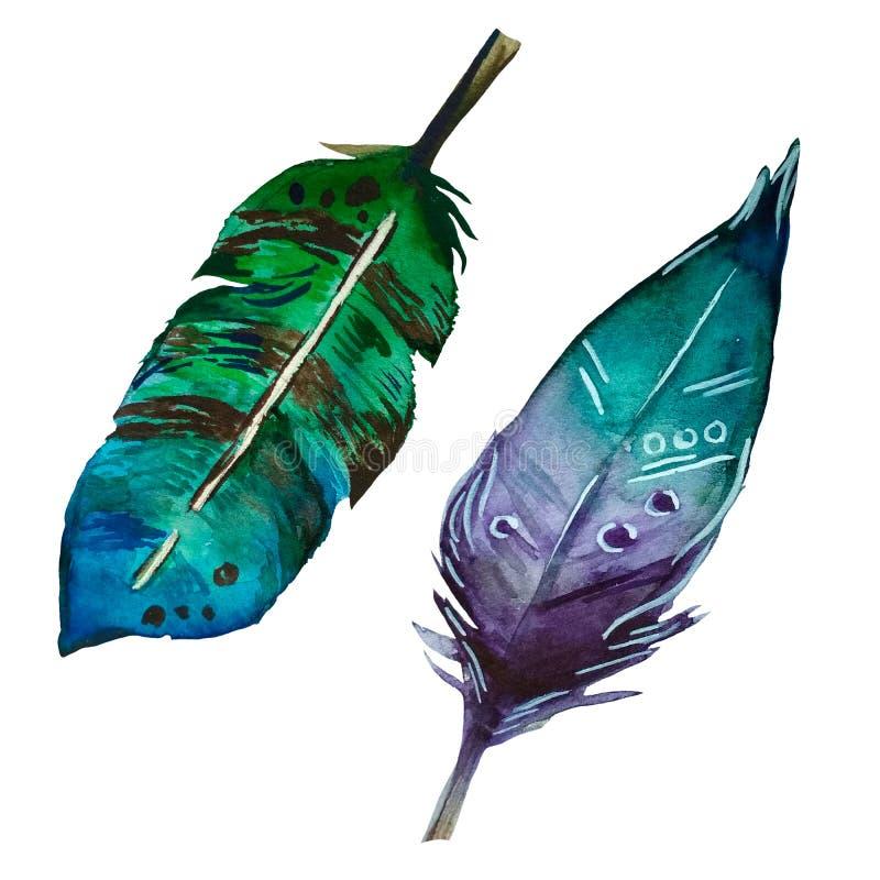 2 färgrika fjädrar för vattenfärg i bohostil royaltyfri illustrationer