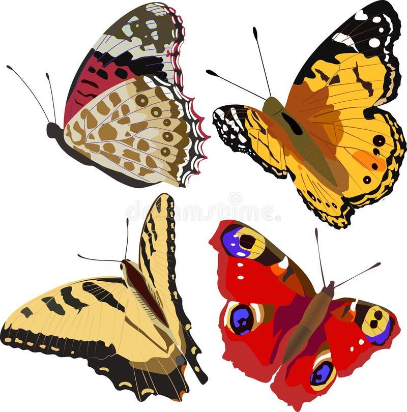 Färgrika Fjärilar Royaltyfri Foto