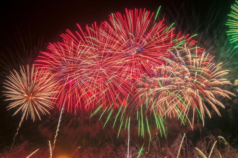 Färgrika fyrverkerier för nytt år royaltyfri bild
