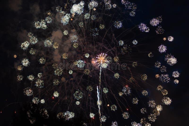Färgrika fyrverkerier på 4th Juli royaltyfri fotografi