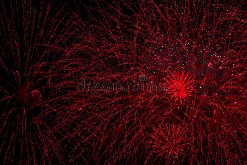Färgrika fyrverkerier, som stort rött regn eller Bisser Explosiva pyrotechnic apparater för estetiska och underhållningavsikter royaltyfria bilder