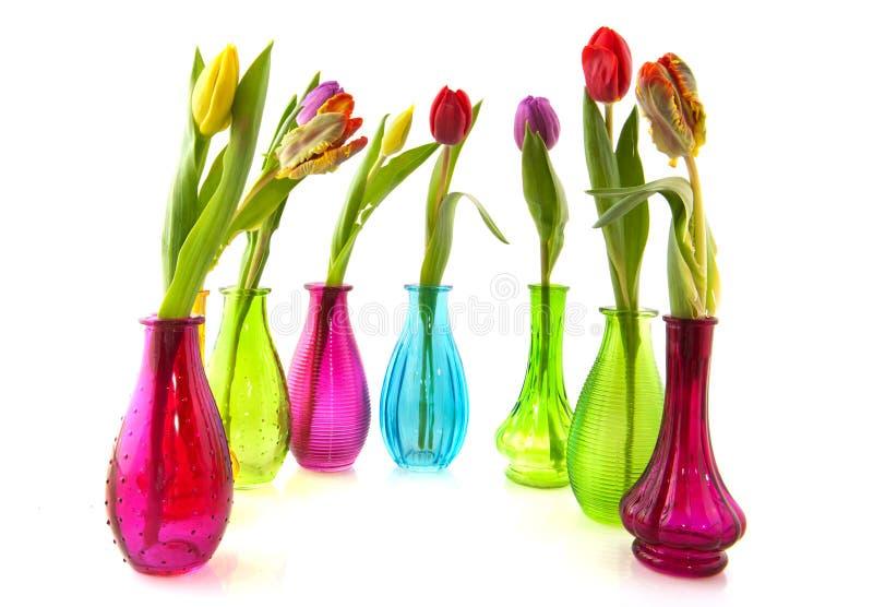 färgrika glass tulpanvases royaltyfri fotografi