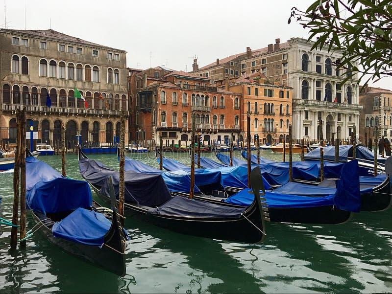 Färgrika Grand Canal royaltyfria bilder
