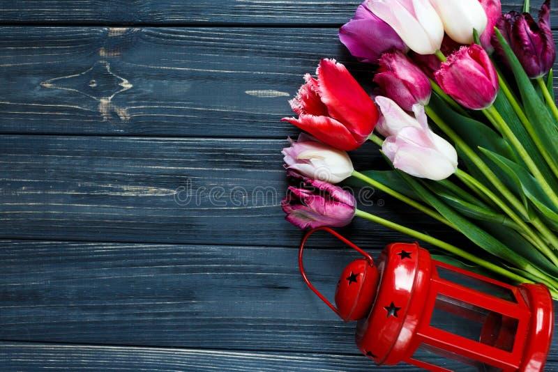 Färgrika härliga rosa violetta tulpan och röd lykta på grå träbakgrund Valentin vårbakgrund arkivbild