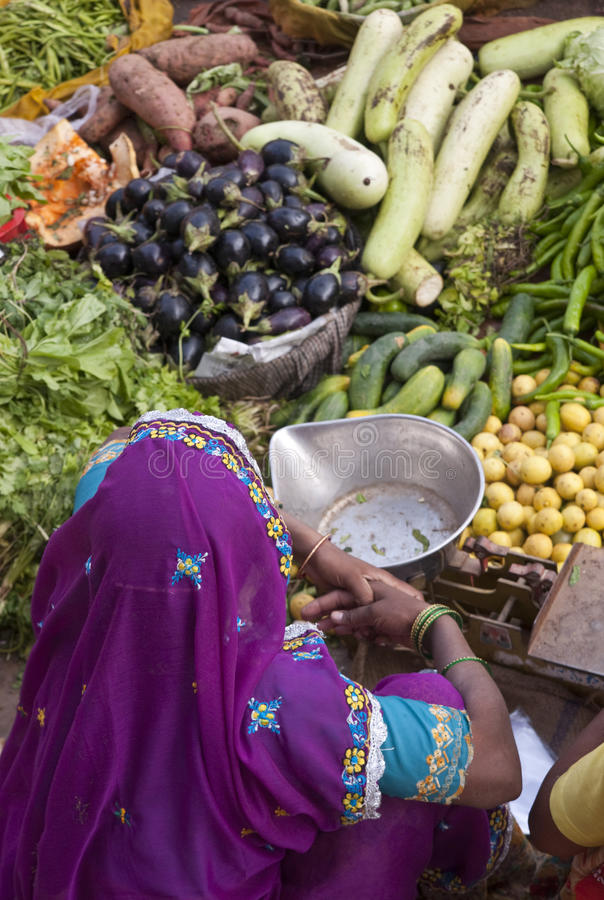 färgrika india royaltyfri foto