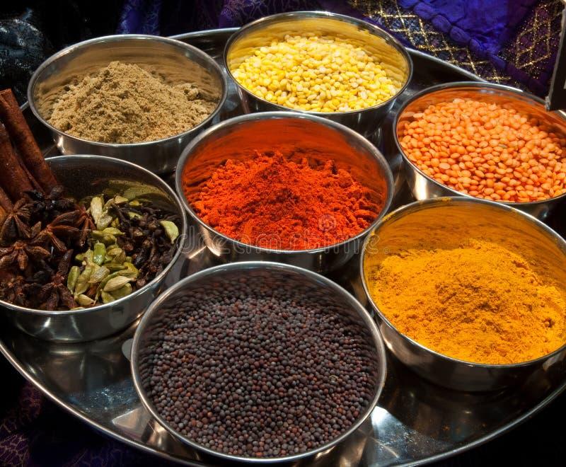 Färgrika indiska kryddor royaltyfri fotografi
