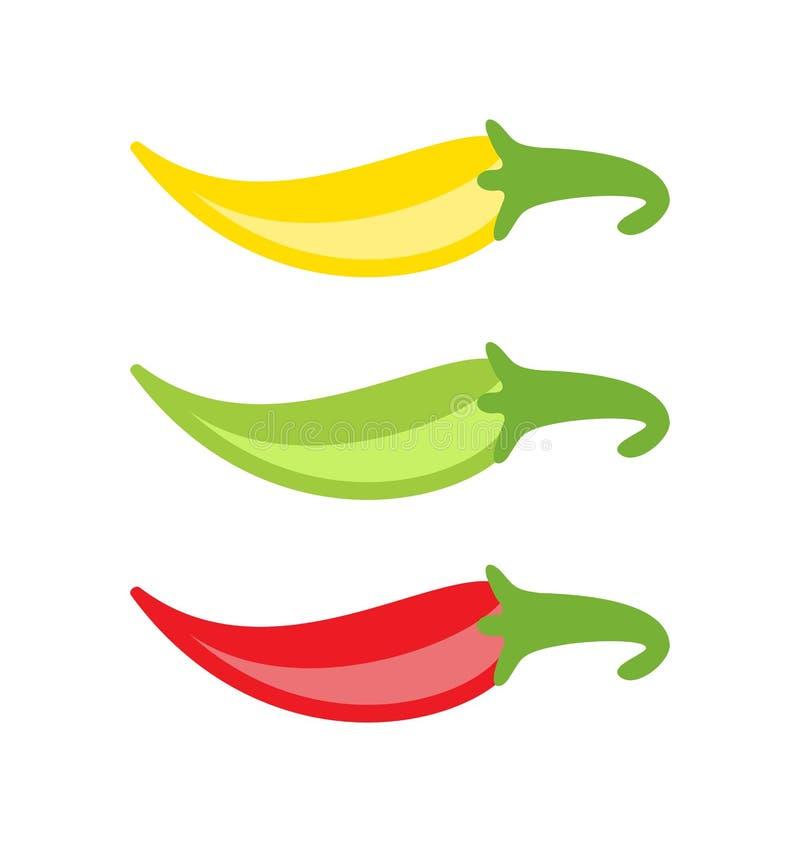 Färgrika isolerade chilipeppar vektor illustrationer