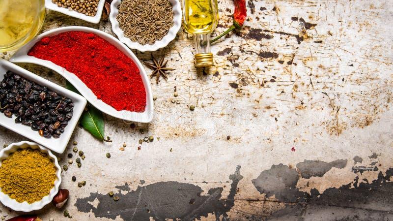 Färgrika kryddor och örtar royaltyfri bild