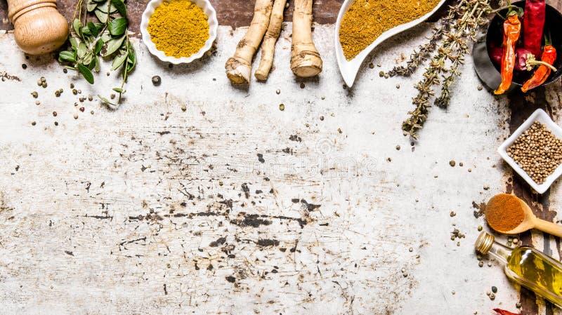 Färgrika kryddor och örtar royaltyfria foton