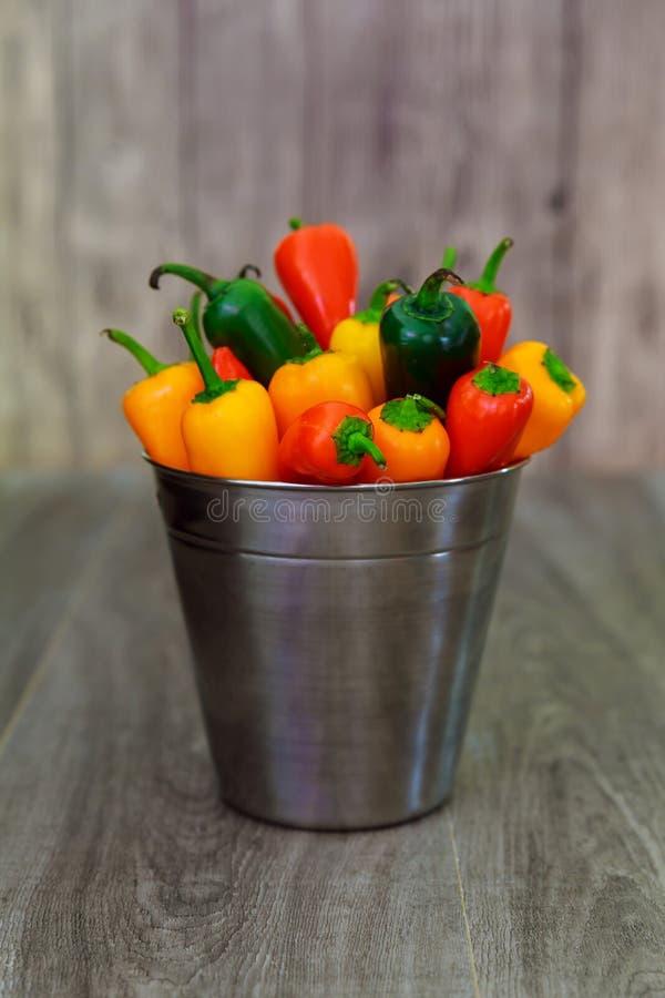 Färgrika mini- söta peppar ovanför sikt i en korg royaltyfria foton