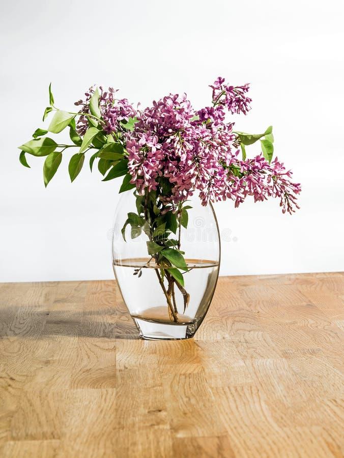 Färgrika nya lila blommor i en vas med vatten på en trätabell och en vit bakgrund arkivbild
