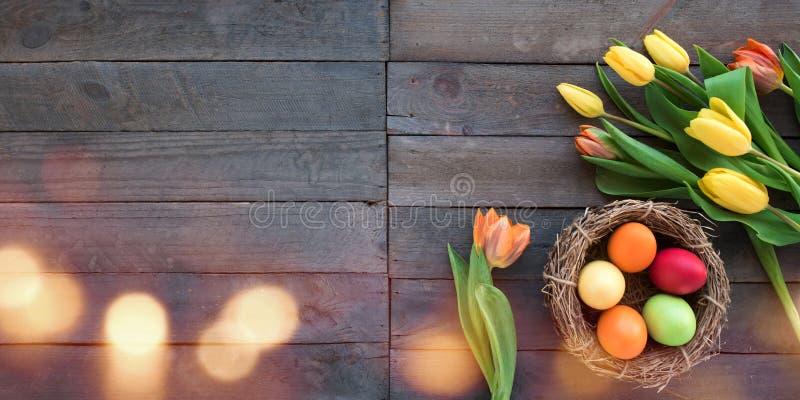Färgrika påskägg och nya tulpan royaltyfria bilder