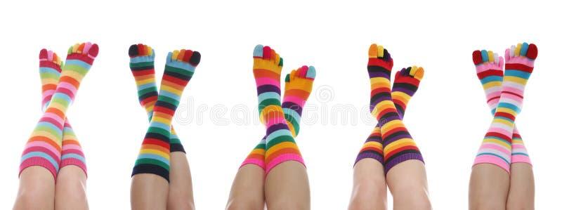 färgrika sockor arkivfoton
