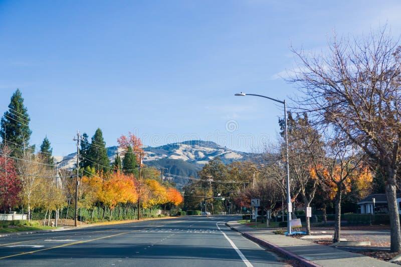 Färgrika träd som ställer upp en väg till och med Danville, toppmöte för Mt Diablo i bakgrunden royaltyfri bild