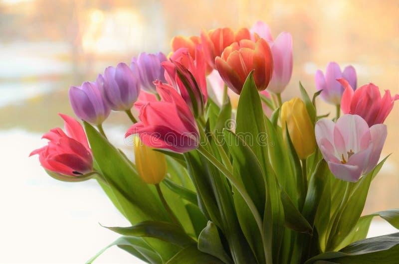 Färgrika tulpan i en vase arkivfoto