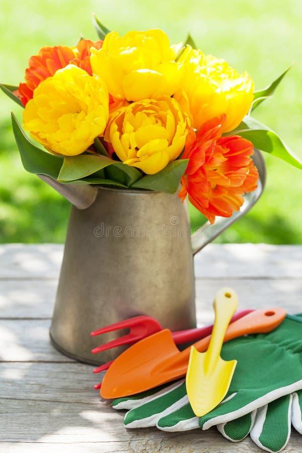Färgrika tulpan och trädgårds- hjälpmedel arkivbilder