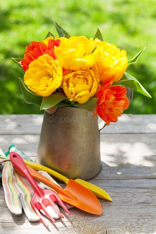 Färgrika tulpan och trädgårds- hjälpmedel royaltyfri bild