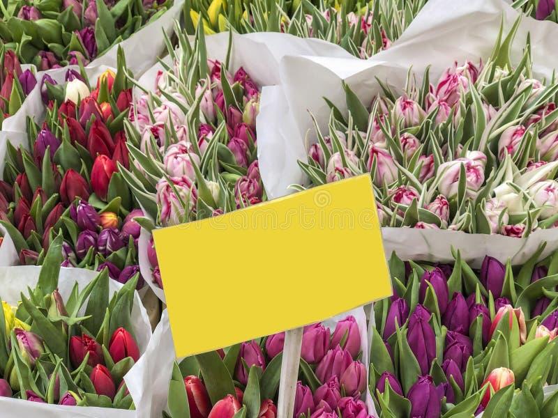 Färgrika tulpanblommor med en tom prisetikett i en blomsterhandlare royaltyfria bilder