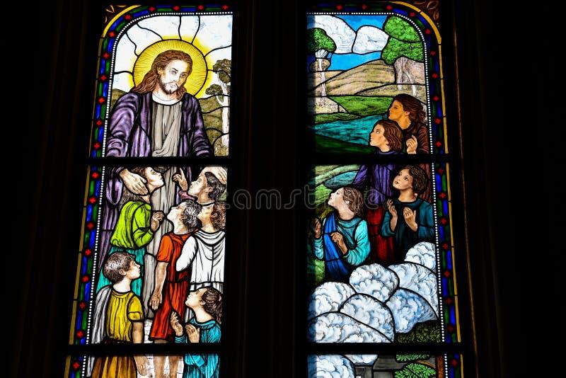Färgrika Vitraux Domkyrka av La Plata royaltyfri foto