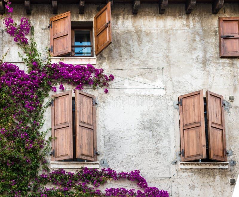 Färgrika Windows royaltyfri fotografi