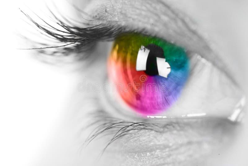färgrikt öga royaltyfri fotografi