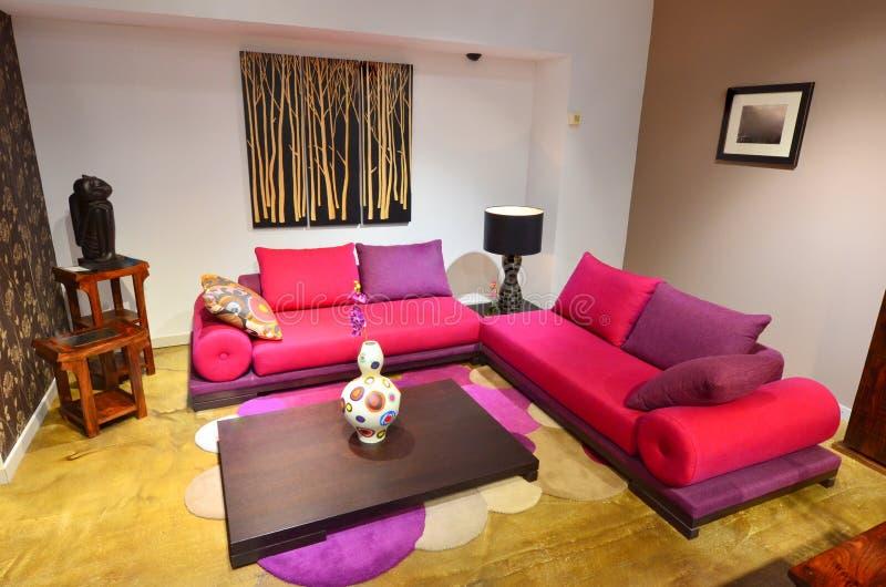 färgrikt bekvämt soffavardagsrum fotografering för bildbyråer