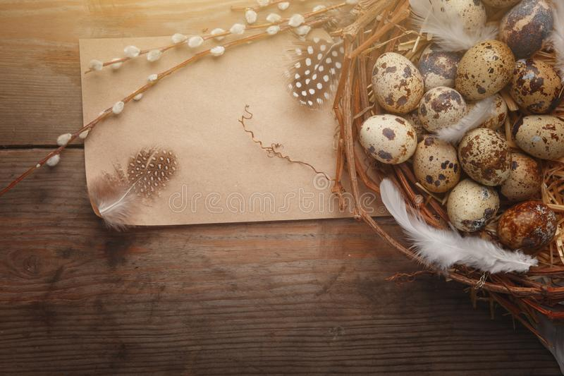 Färgrikt easter ägg i rede på mörkt wood bräde royaltyfri bild