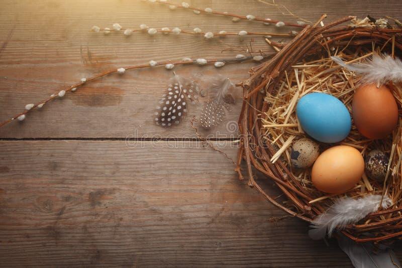 Färgrikt easter ägg i rede på mörkt wood bräde royaltyfria bilder