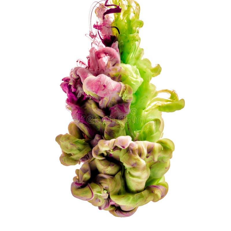 Färgrikt färgpulver som isoleras på vit bakgrund grön liladroppe som virvlar runt under vatten Moln av färgpulver i vatten royaltyfri fotografi