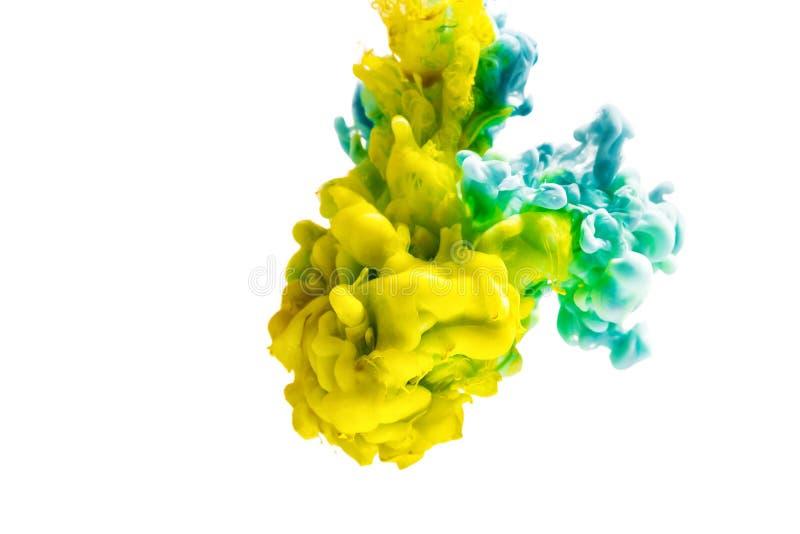 Färgrikt färgpulver som isoleras på vit bakgrund gul blåttdroppe som virvlar runt under vatten Moln av färgpulver i vatten royaltyfria bilder