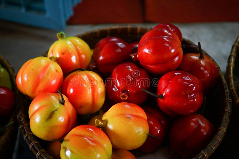 Färgrikt fejka frukt fotografering för bildbyråer