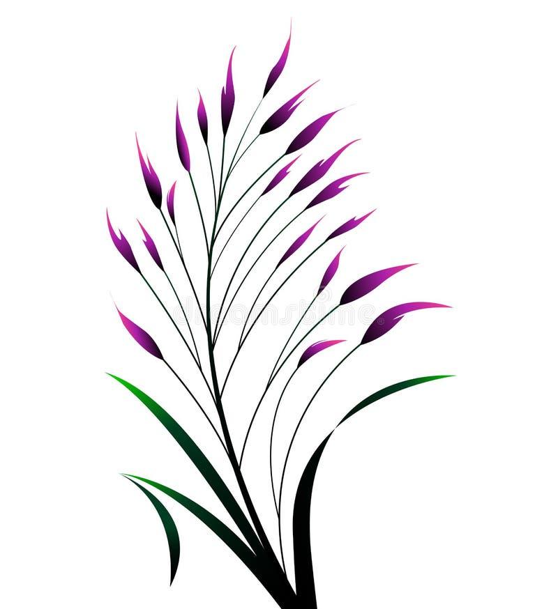 Färgrikt gräs för vektor vektor illustrationer