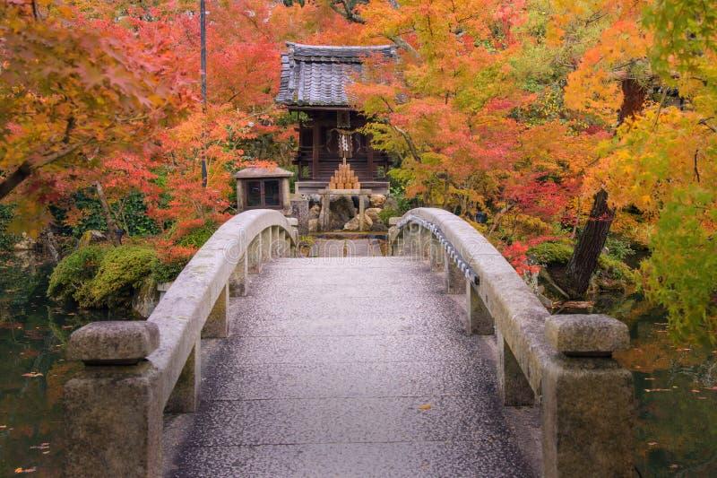 Färgrikt höstblad på den Eikando templet, Kyoto arkivfoton
