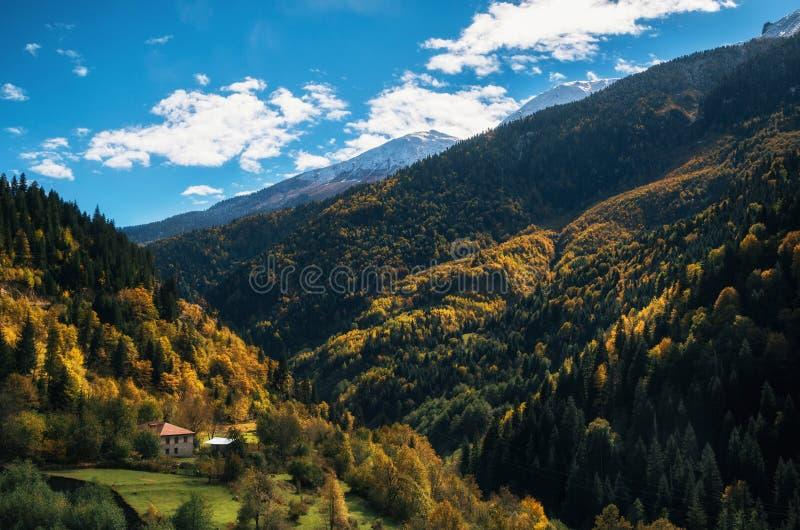 Färgrikt höstlandskap i bergbyn Ett ensamt hus bland bergen och den färgrika skogen Georgia royaltyfria foton