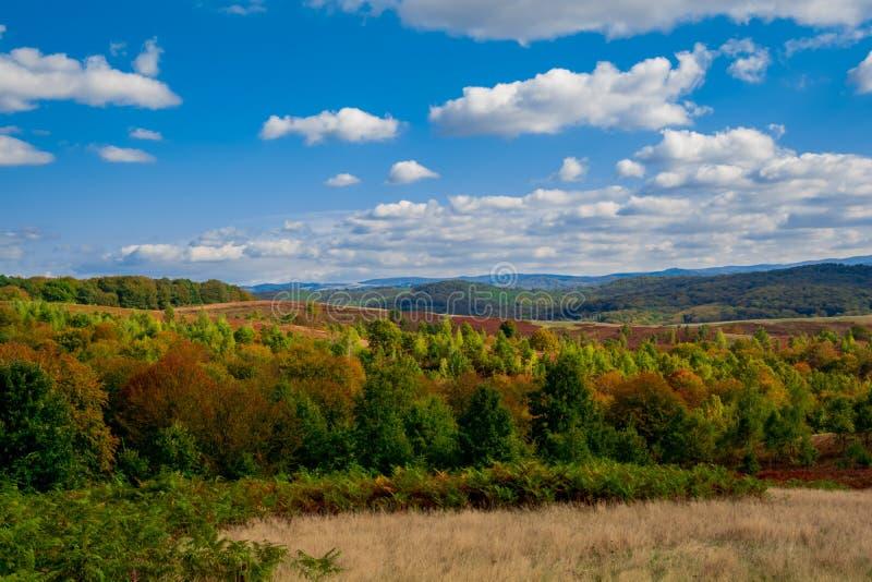 Download Färgrikt Höstlandskap I Berget Arkivfoto - Bild av gräs, gryning: 78726706