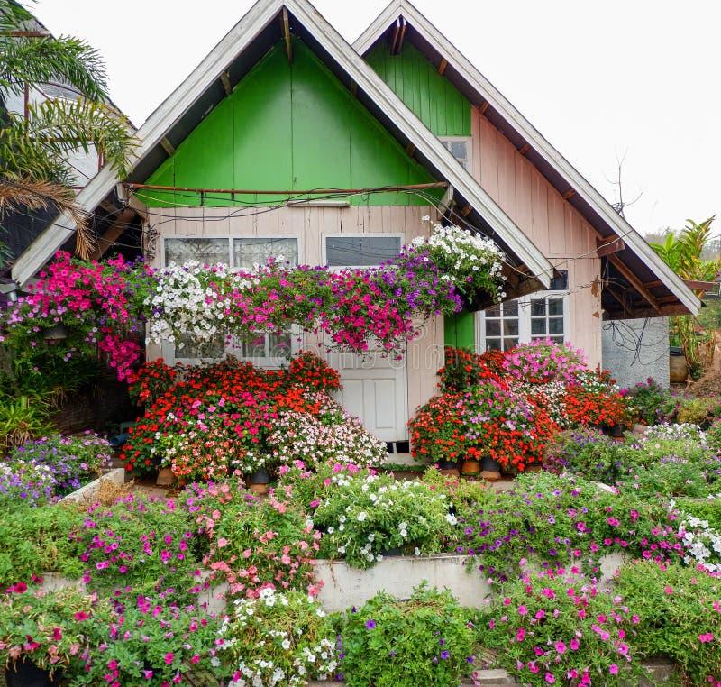 Färgrikt hus för hem- blomma royaltyfria bilder