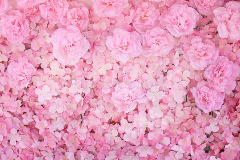 Färgrikt mångfärgat konstgjort dekorativt av den blommande modellgruppen för härlig rosa nejlika med vit vanlig hortensiatextur p arkivfoto