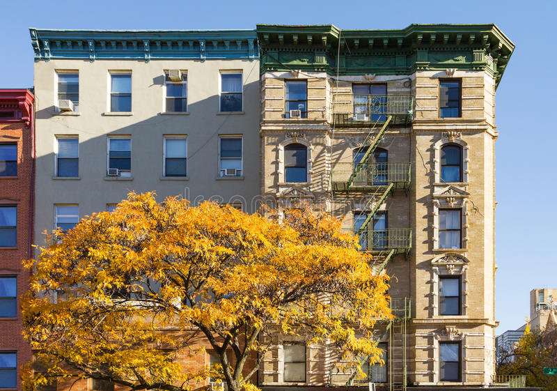 Färgrikt nedgångträd och hyreshus i East Village av royaltyfri bild