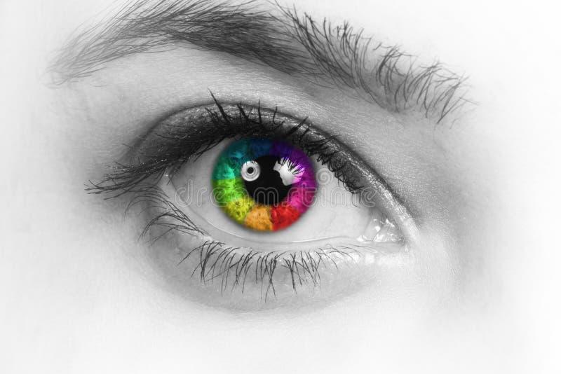 Färgrikt och naturligt regnbågeöga för flicka på vit bakgrund royaltyfri fotografi