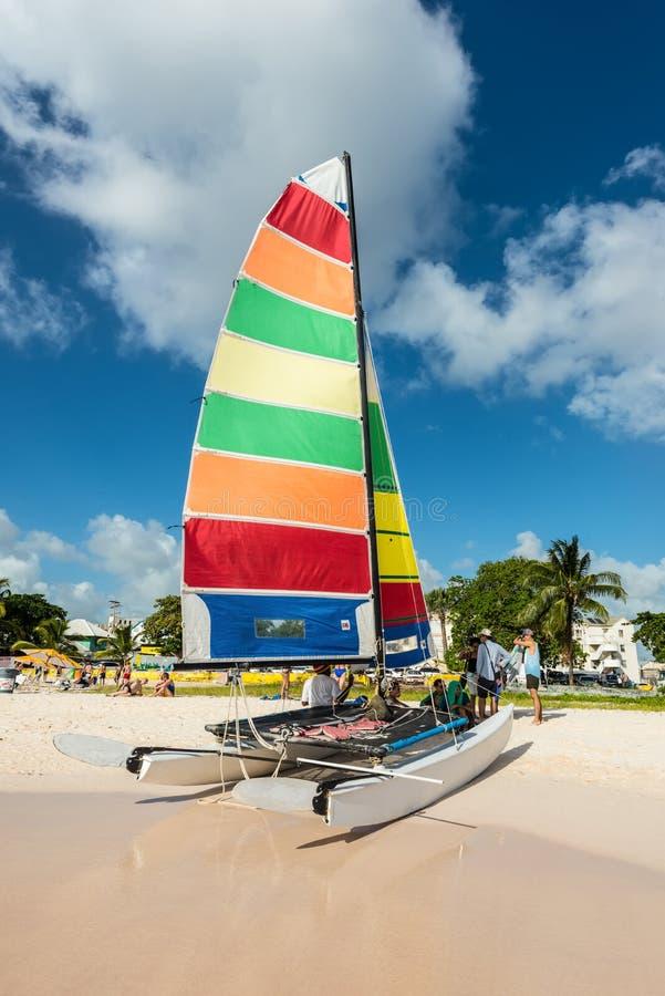 Färgrikt segla på katamaran på den Brownes stranden i Barbados royaltyfria bilder